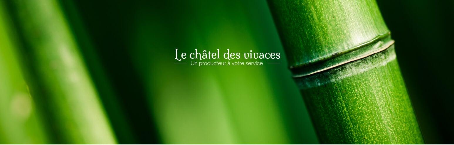 Site e-commerce PrestaShop Le Châtel des Vivaces